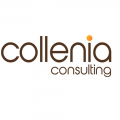 COLLENIA - Client animation team building