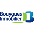 BOUYGUES IMMOBILIER - Client animation team building