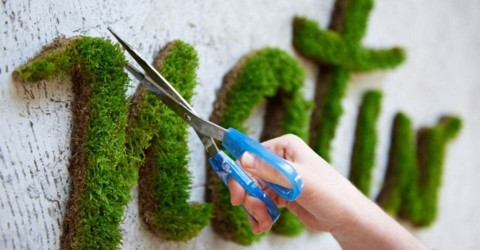 graffiti vegetal developpement durable green tag